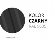 14.Kolor-Garazu-Czarny-RAL-9005-min