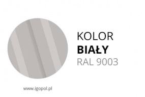 3.Kolor-Garazu-Bialy-RAL-9003-min