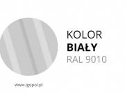 4.Kolor-Garazu-Bialy-RAL-9010-min