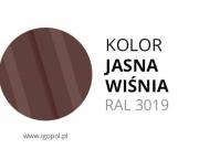 11.Kolor-Garazu-Jasna-Wisnia-RAL-3009-min
