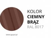 6.Kolor-Garazu-Ciemny-Braz-RAL-8017-min