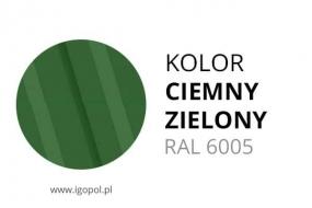 9.Kolor-Garazu-Ciemny-Zielony-RAL-6005-min