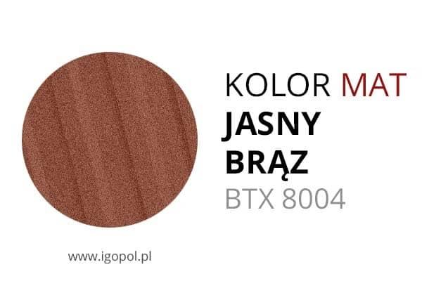 20.Kolor-Garazu-Matowy-Jasny-Braz-BTX-8004-min