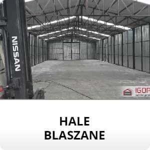 galeria-hale-blaszane