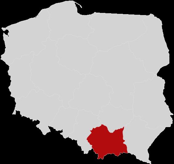 Garaże blaszane małopolskie