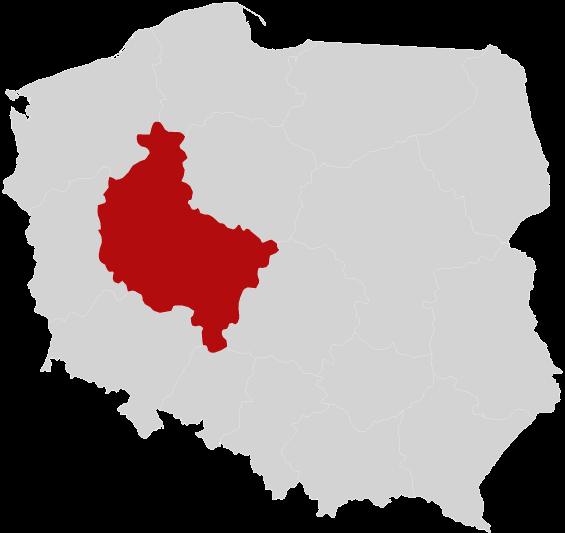 Garaże Blaszane Wielkopolskie Blaszaki Poznań Gniezno Konin